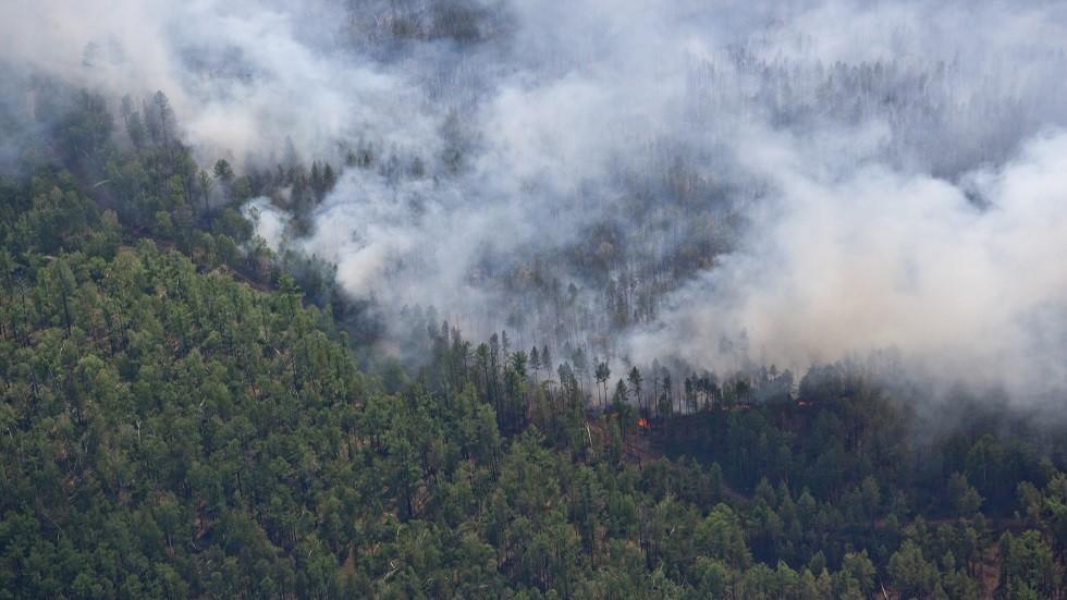 عالم يدعو إلى عدم الربط بين الاحتباس الحراري والحرائق الطبيعية