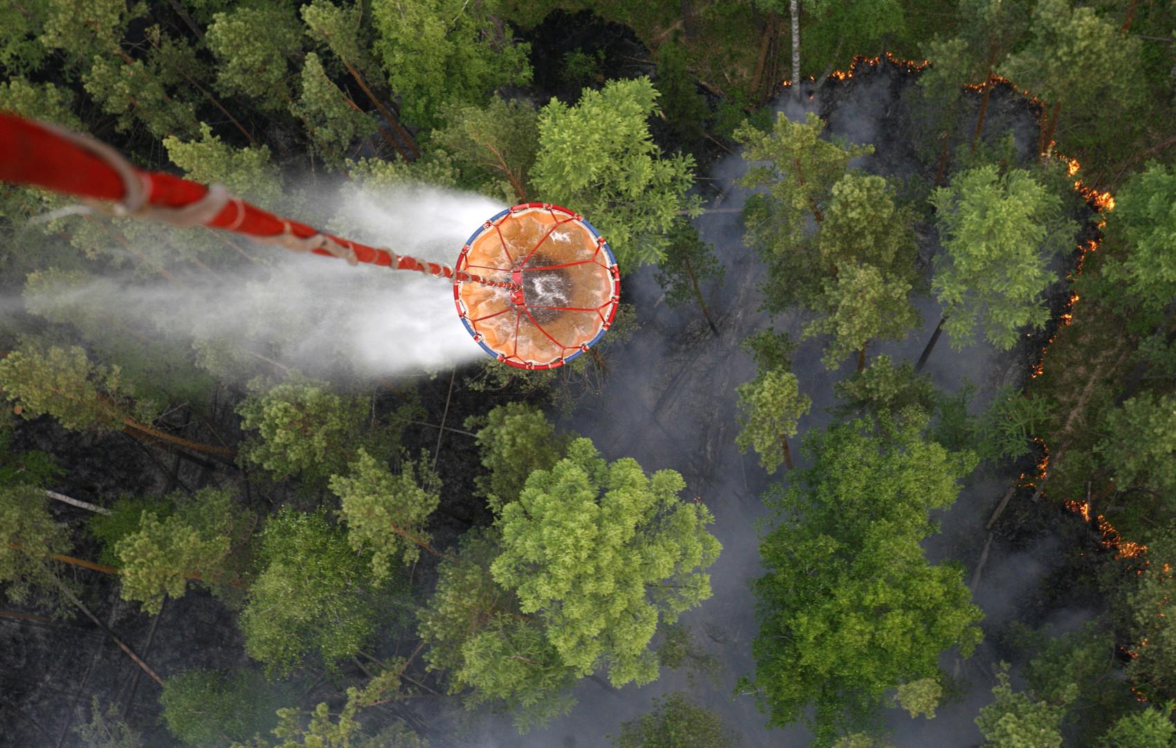 مع استمرار حالة الطوارئ في 4 أقاليم روسية.. إخماد 50 حريق غابات خلال 24 ساعة
