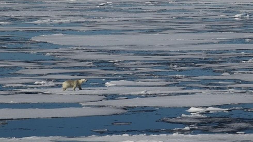 تسجيل أعلى درجة حرارة في القطب الشمالي