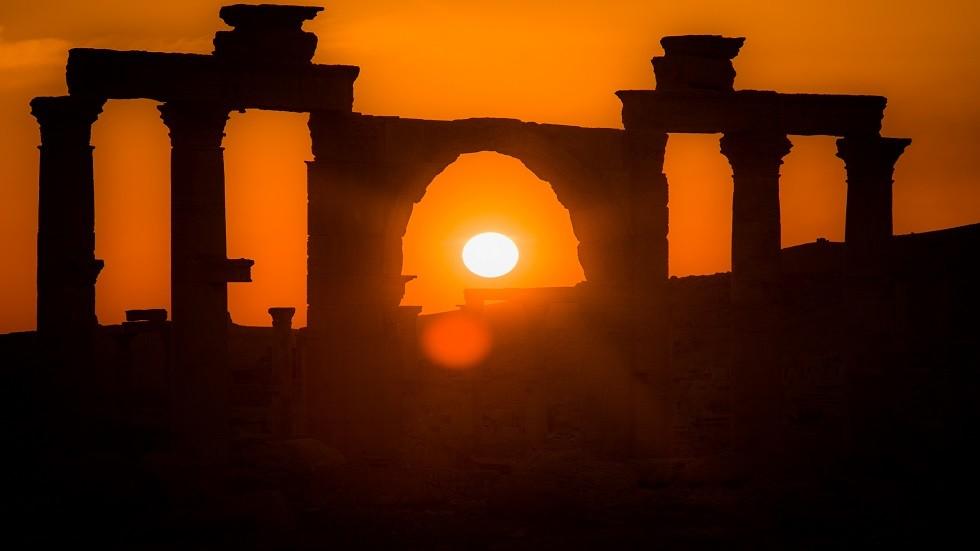 الأرميتاج الروسي يعرض خدماته لترميم متحف تدمر السوري