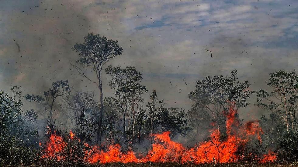 خبراء يحذرون .. حرائق الأمازون قد تدفع الأرض إلى