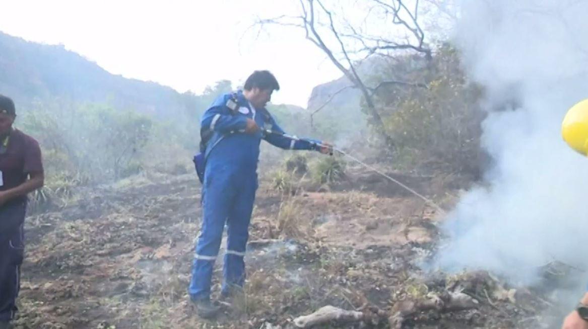 شاهد.. رئيس بوليفيا يشارك شخصيا في إخماد حرائق الأمازون