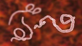 الإيبولا ينتقل إلى بلدة نائية في الكونغو