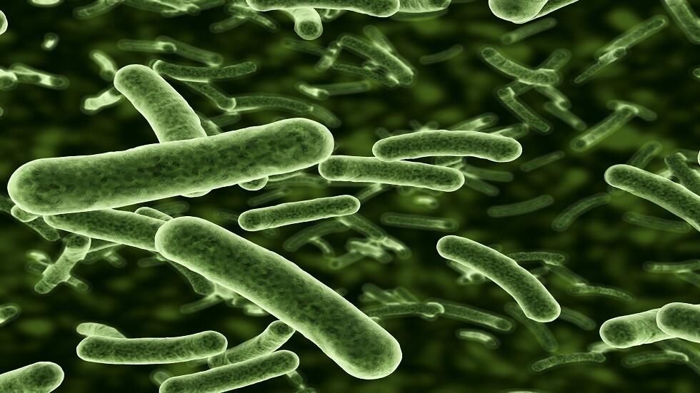 علماء يكتشفون كيفية مقاومة البكتيريا للمضادات الحيوية