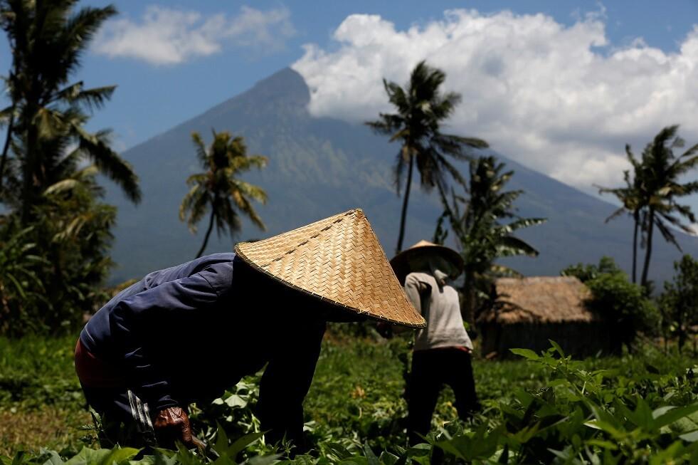 سرقة بيانات البطاقات البنكية عبر ماكينات الصرف في إندونيسيا