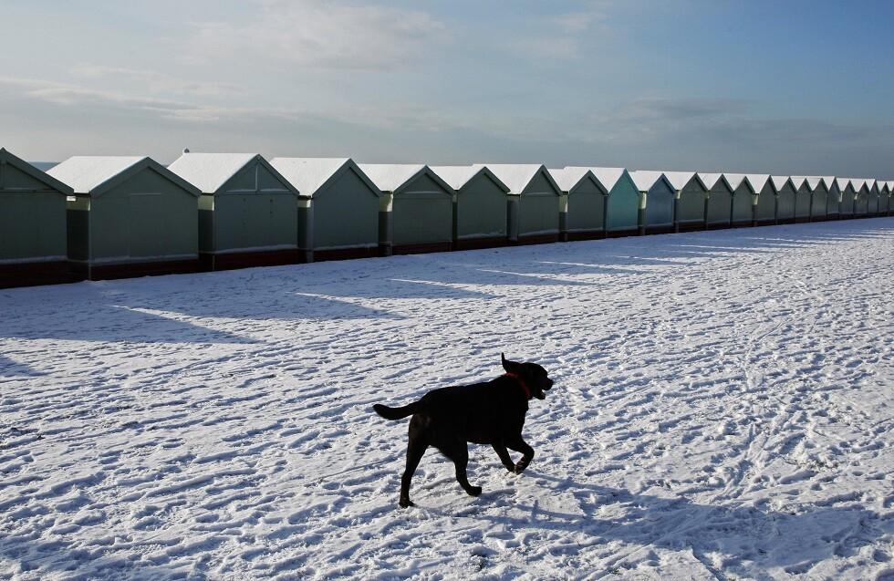 الثلج في برايتون إنجلترا