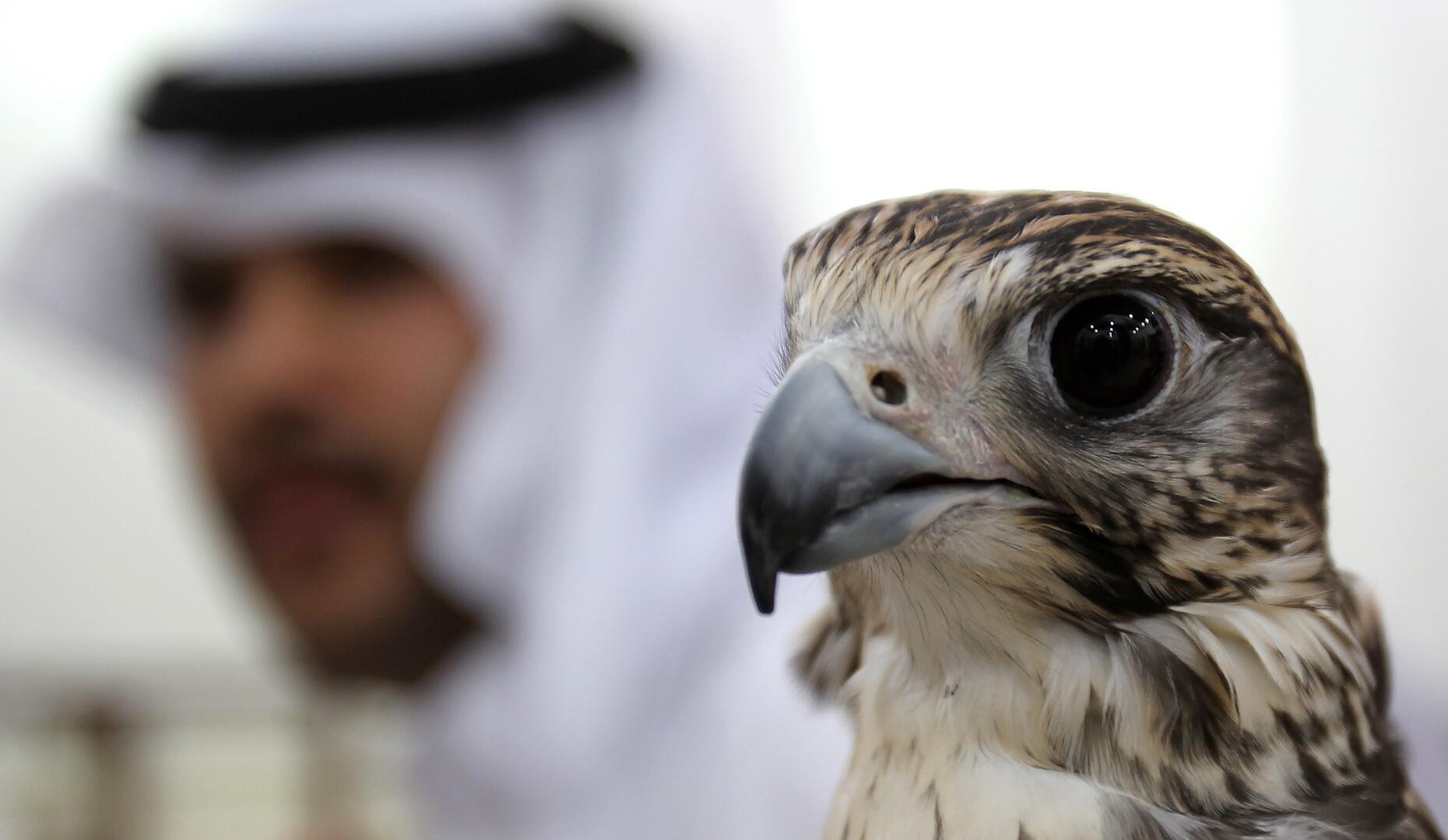 خبراء قطريون يعرضون المساعدة على روسيا