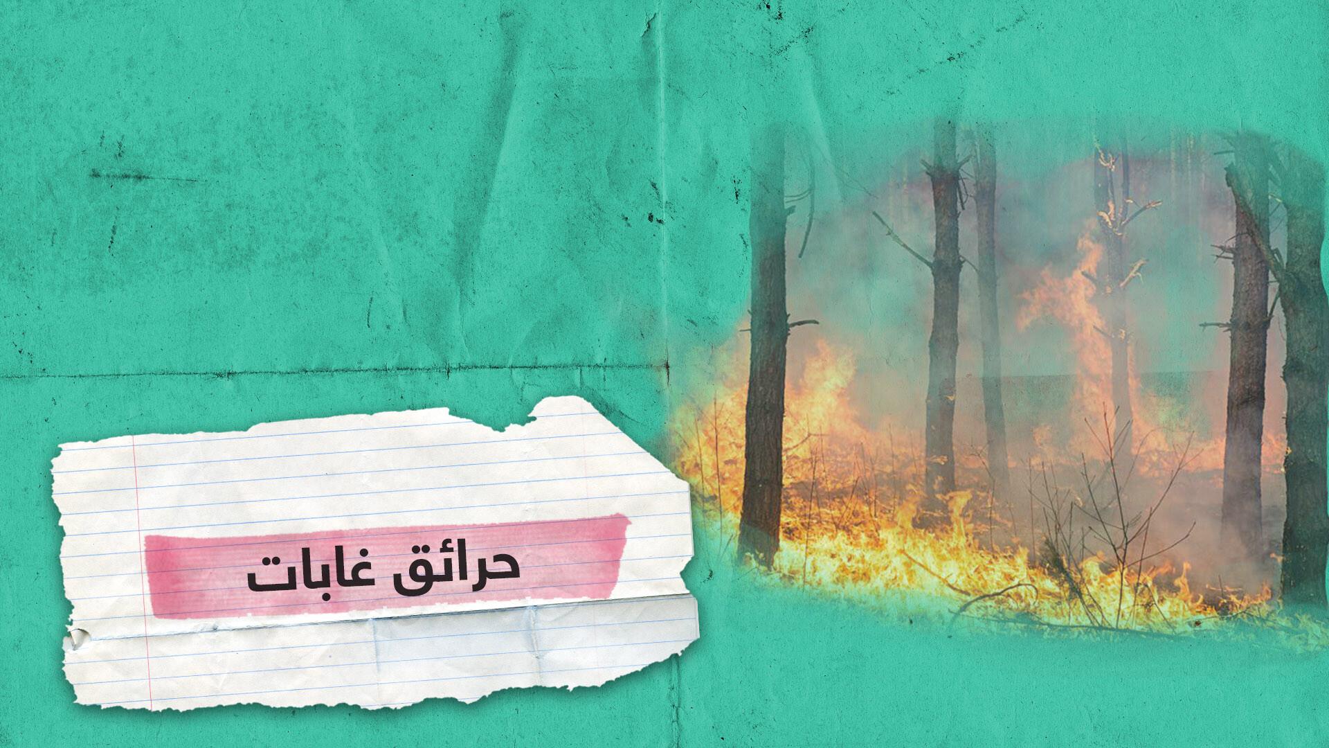 حرائق الغابات في إندونيسيا تحجب الرؤية وتشل حياة الناس