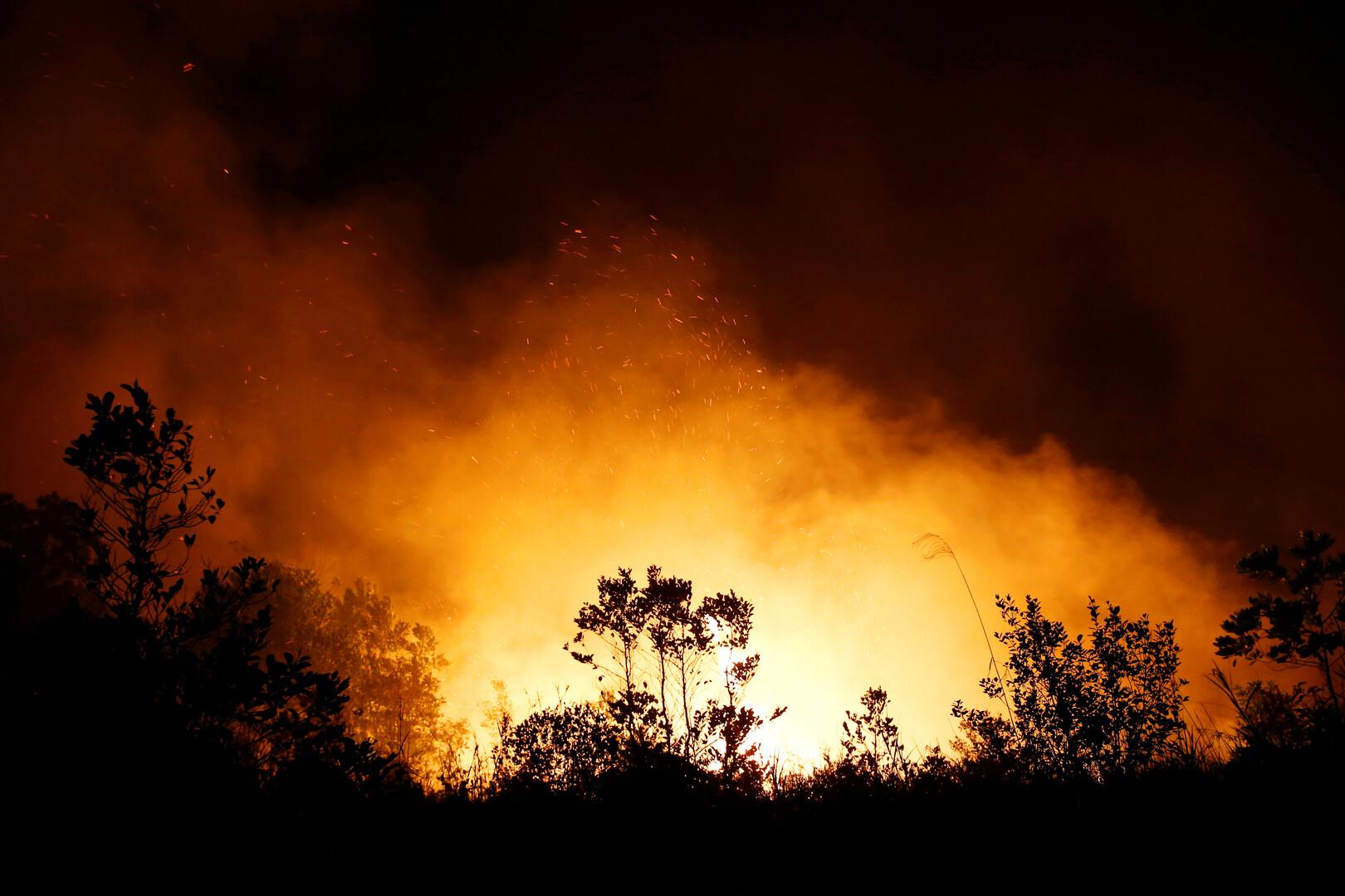جرائق الغابات في إندونيسيا