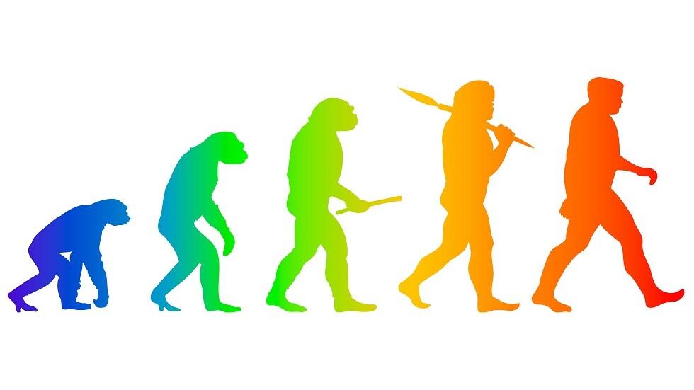 تنقيح نظريةتطور الإنسان