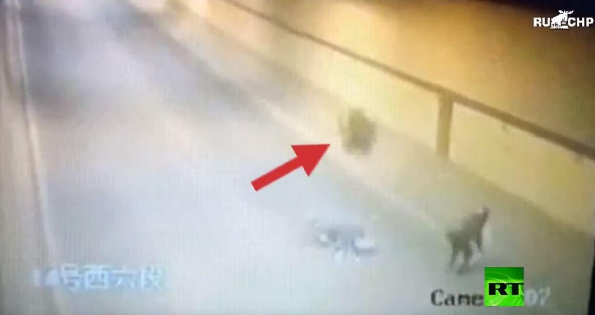 عجلة شاحنة تدهس سائق دراجة وتعود بعد 15 ثانية لتدهسه مرة أخرى!