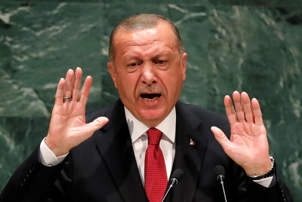 أردوغان أسس جيشا من 80 ألف مقاتل لمواجهة الأسد