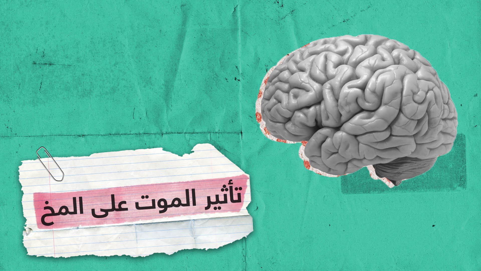 دراسة إسرائيلية: المخ يحاول جاهدا منع الإنسان من التفكير في الموت