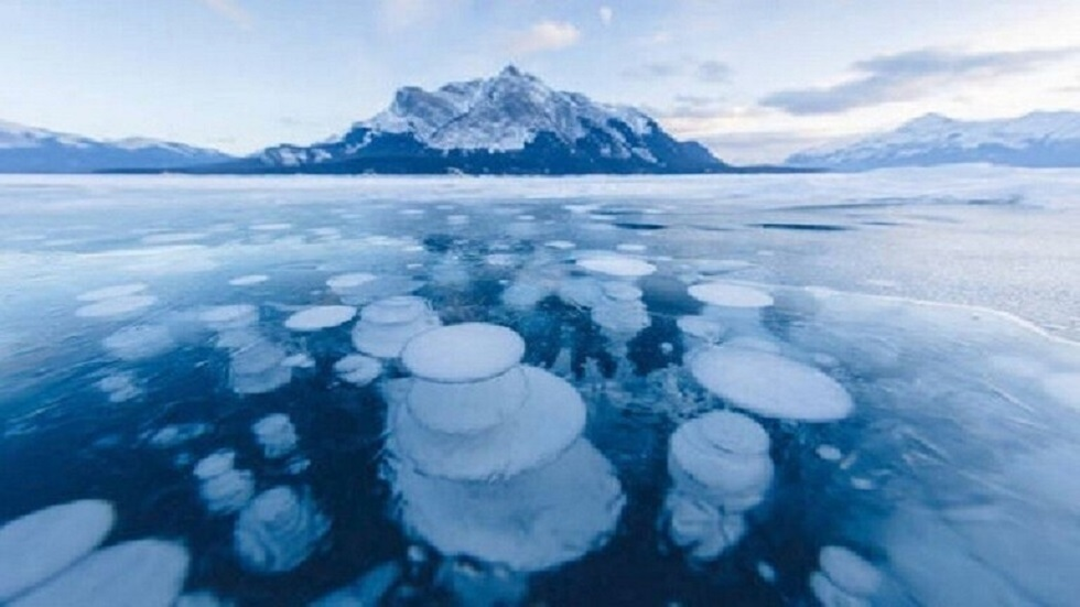 The accumulation of sea snow in Antarctica threatens the Earth with another ice age