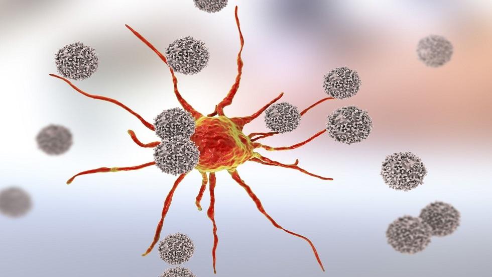 مادة غذائية تقوي جهاز المناعة وتعزز قدرته