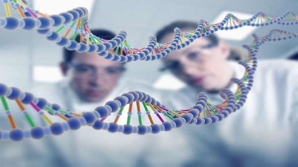 جزيء الحمض النووي ينقل المعلومات الوراثية