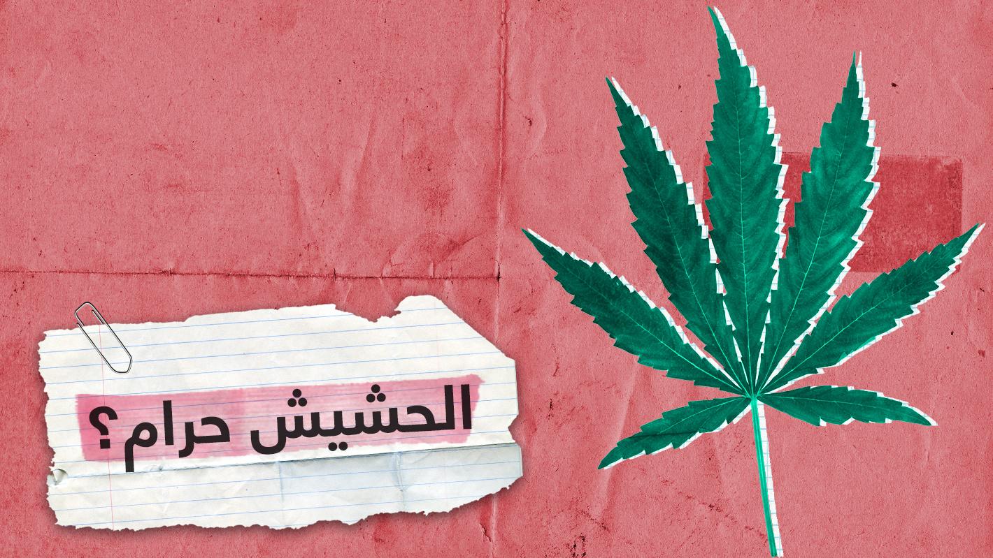 """""""الحشيش ليس حراما والسجائر أخطر منه"""".. شاهد الحلقة الكاملة على RT online"""