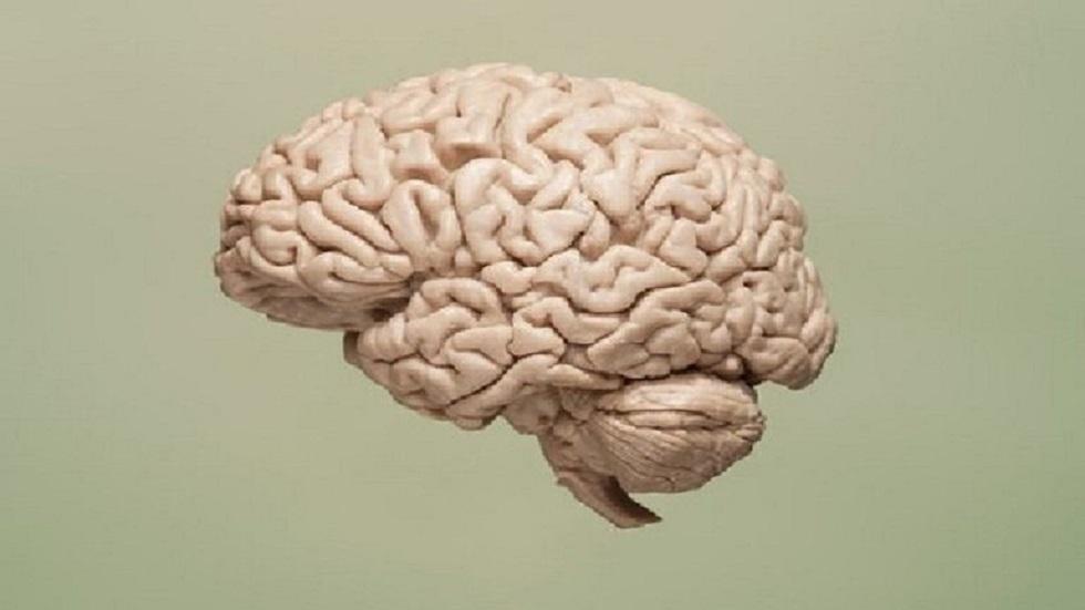 مسح للدماغ يوضح كيف يمكن البقاء على قيد الحياة بنصف مخ!