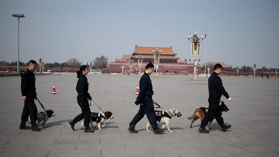 الصين تستنسخ 6 كلاب بوليسية بهدف ضمها للشرطة