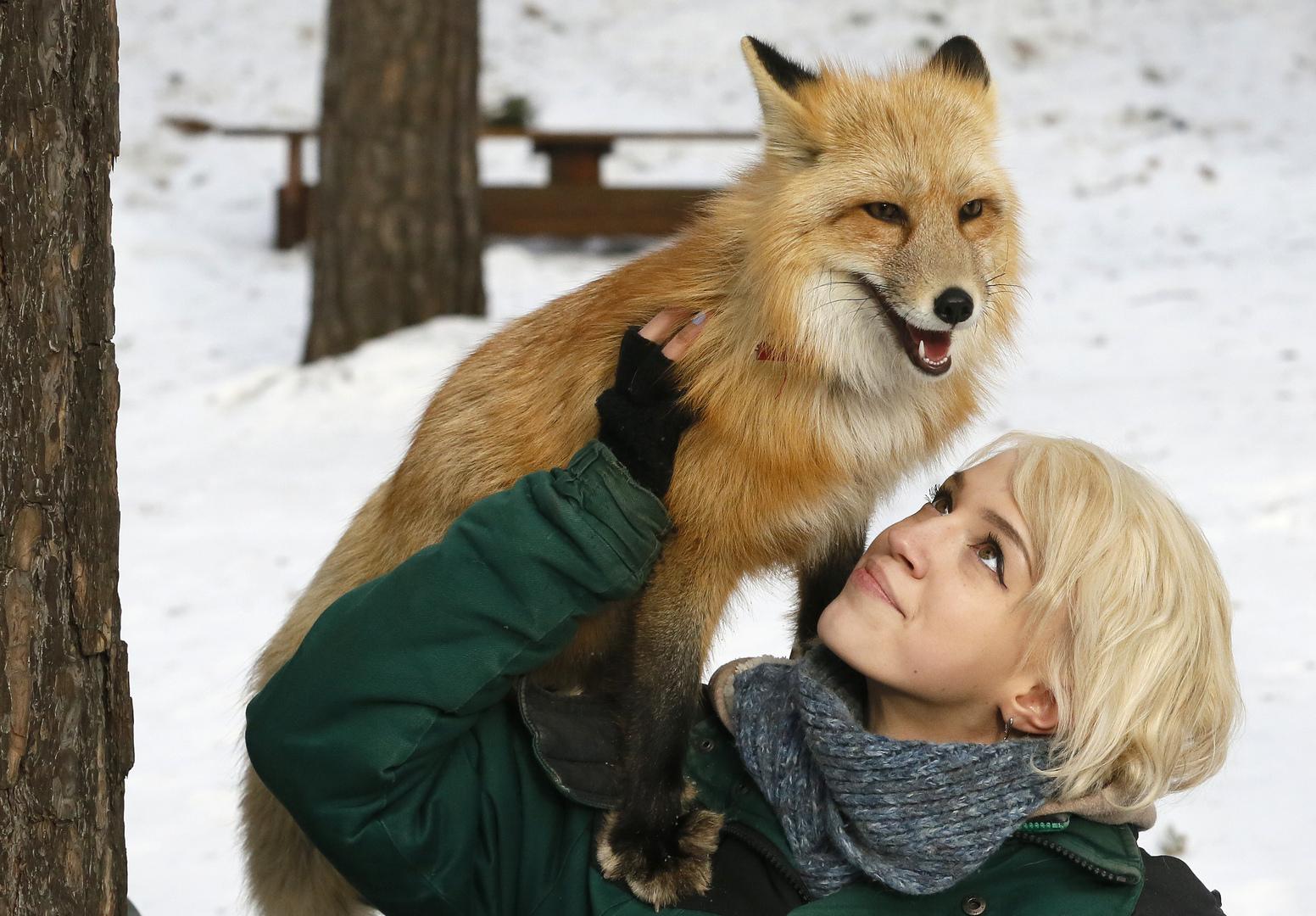 أسباب تدفعك لتجنب تربية الحيوانات البرية في المنزل