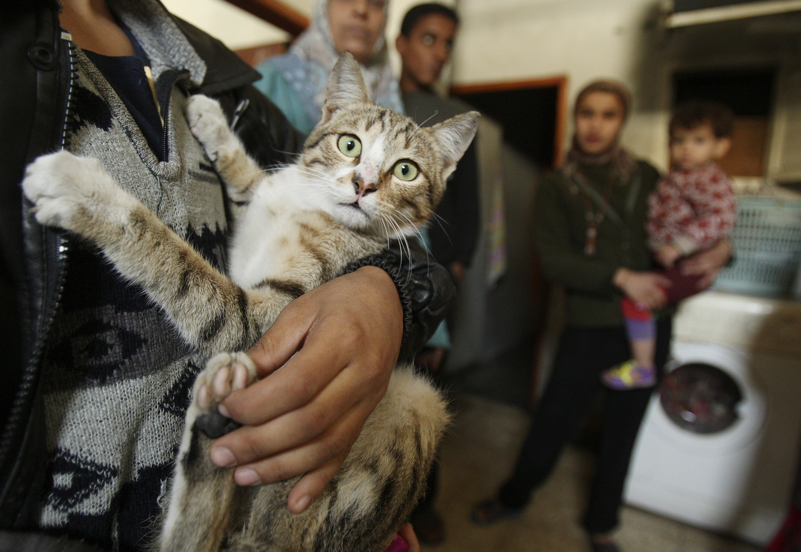 مصر.. حالات اختناق بسبب