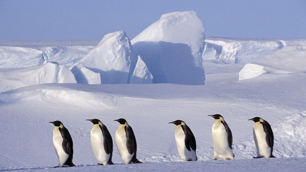 اعمق نقطة في اليابسة تقع في القطب الجنوبي