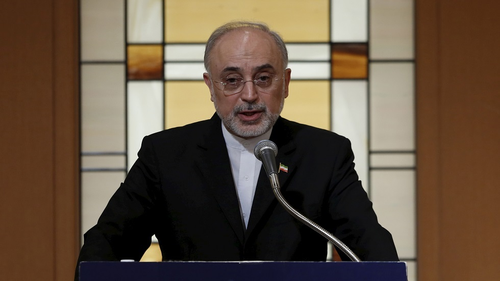 رئيس منظمة الطاقة الذرية في إيران، علي أكبر صالحي