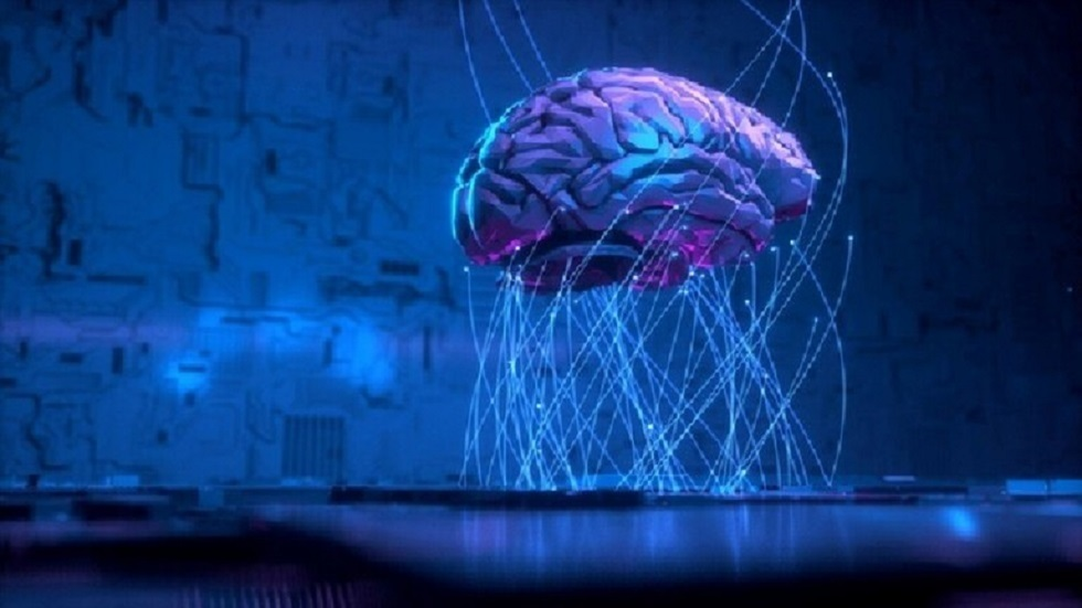8 معلومات مثيرة تعلمناها عن الدماغ في 2019