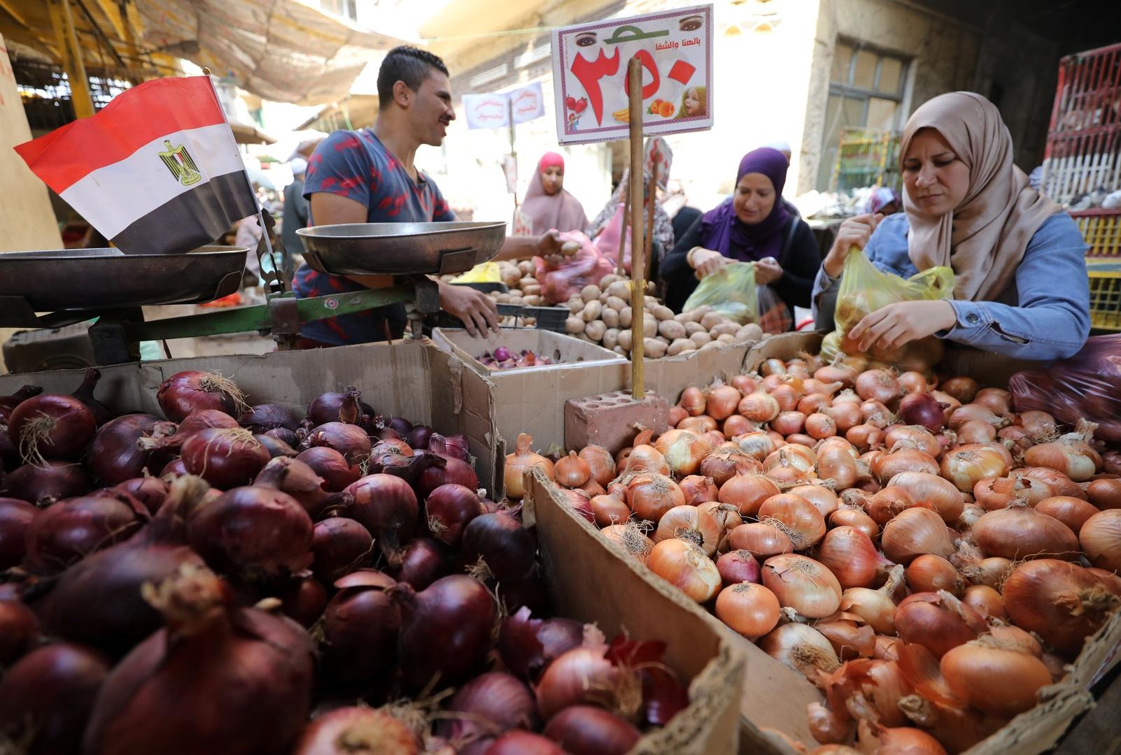 مصر.. 5 ملايين طن صادرات زراعية في 2019