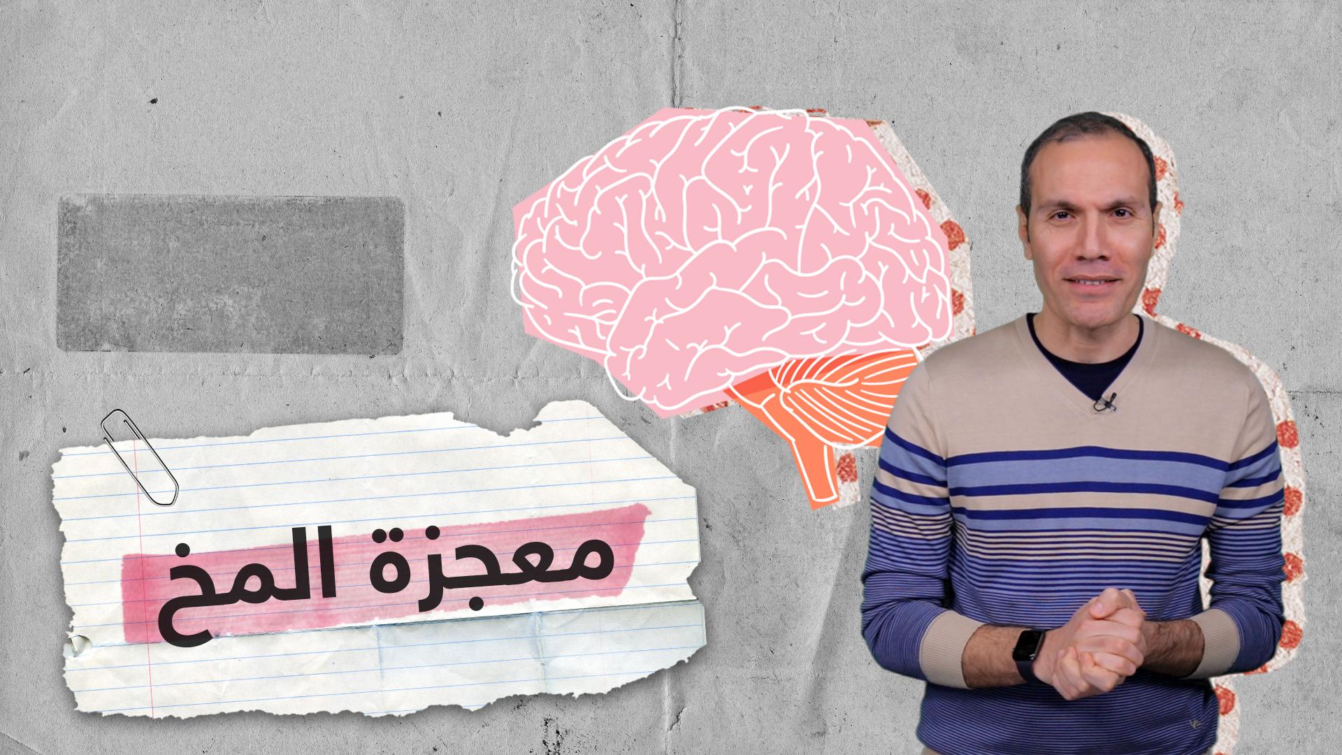 معجزة المخ البشري.. ماذا يعرف العلماء عنه؟