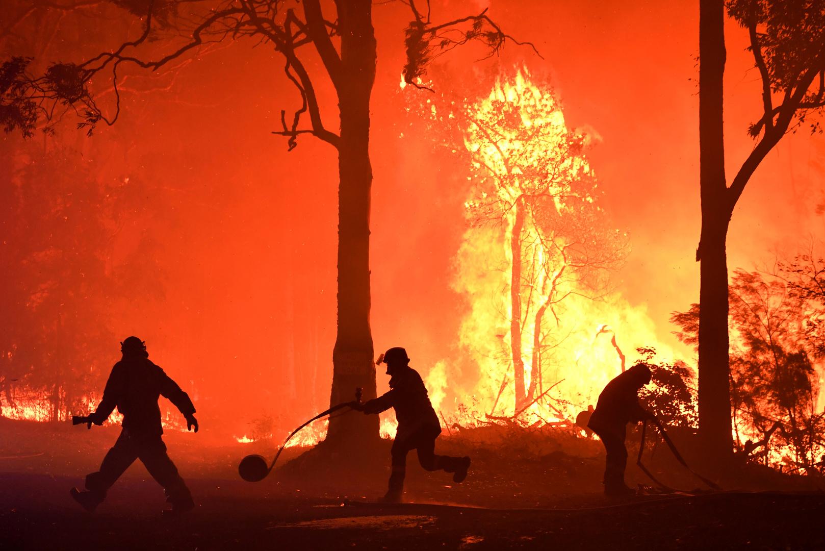 نفوق أكثر من مليار حيوان جراء حرائق أستراليا المتواصلة