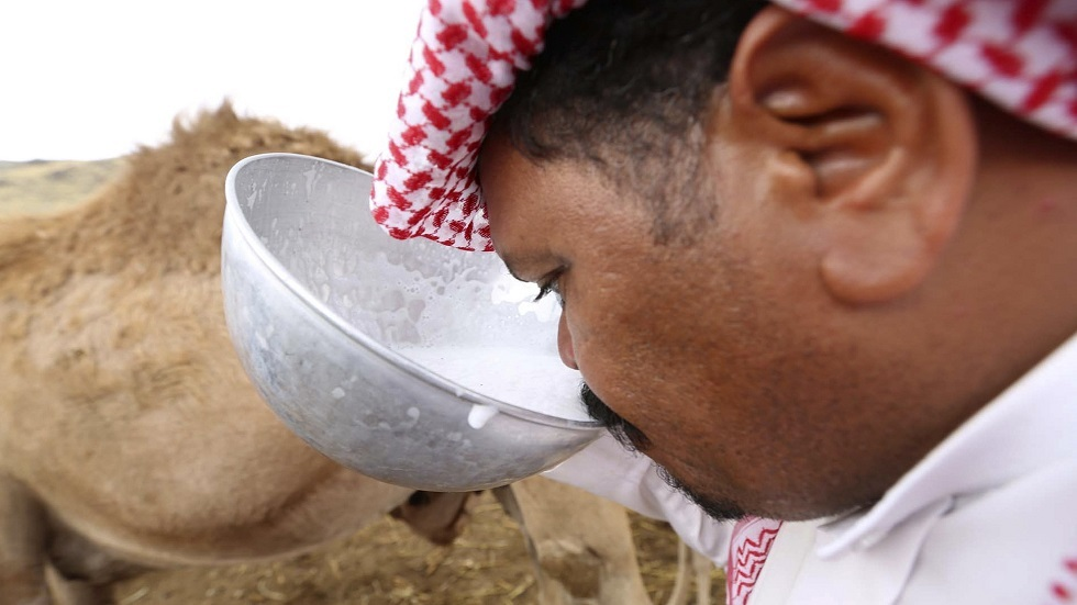 السعودية.. إزالة 15 حظيرة لبيع حليب الإبل على الطرقات