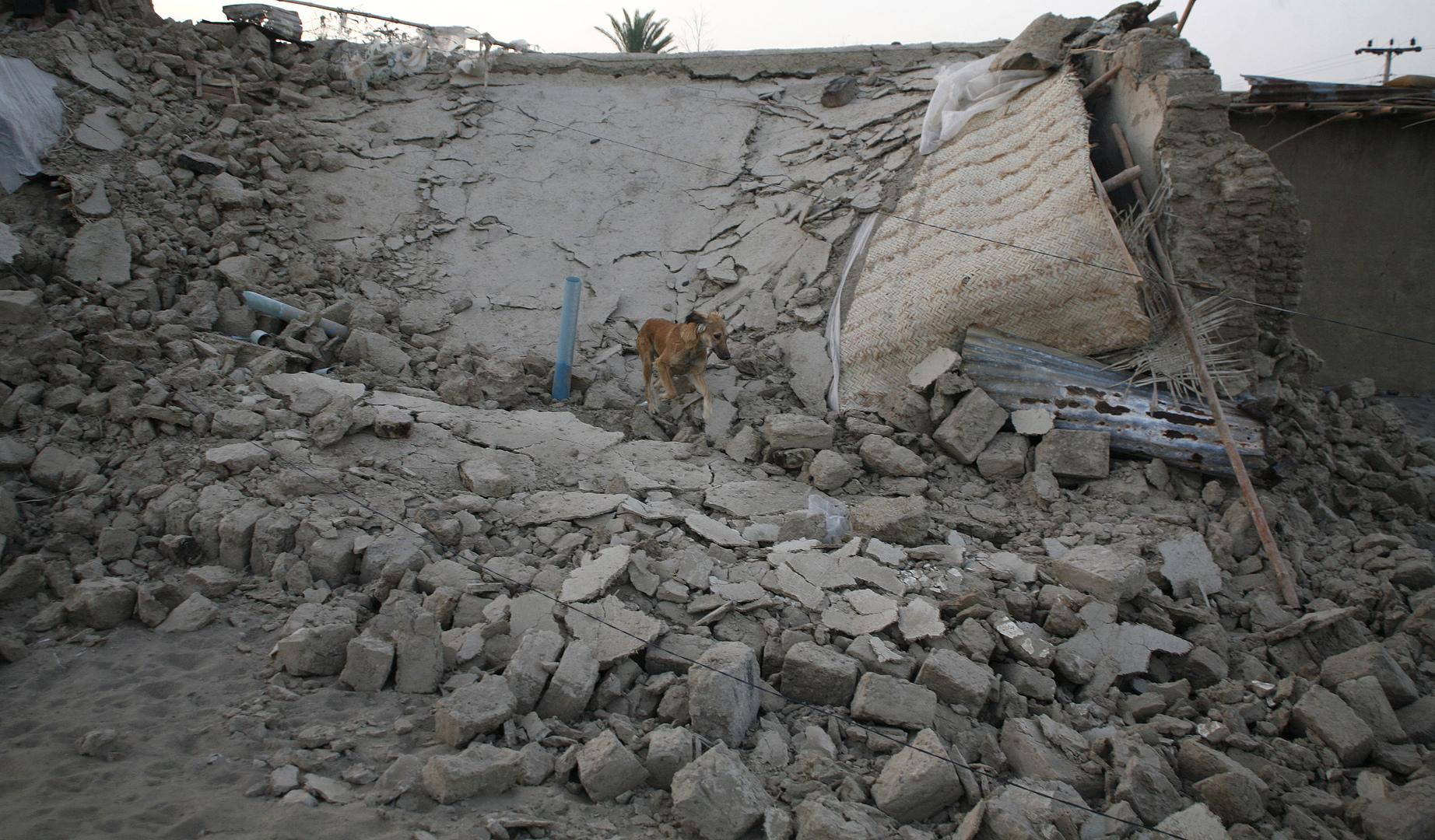 نتيجة بحث الصور عن زلزال