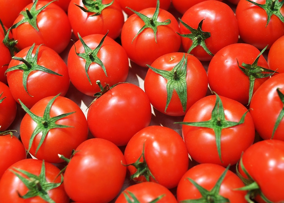 الأطباء يحددون الأشخاص الذين يجب ألا يتناولوا الطماطم