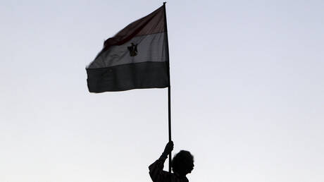 مصر تطالب بتحقيق فوري في قضايا تعذيب داخل تركيا