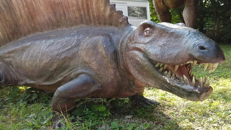 اكتشاف نوع جديد من الديناصورات