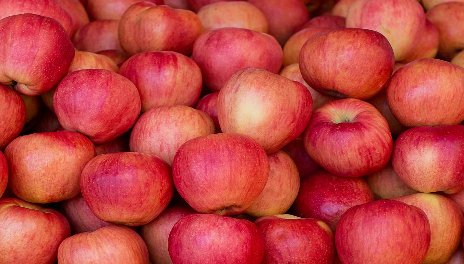 أفضل 10 أطعمة يمكنها الحد من خطر الوقوع ضحية السرطان