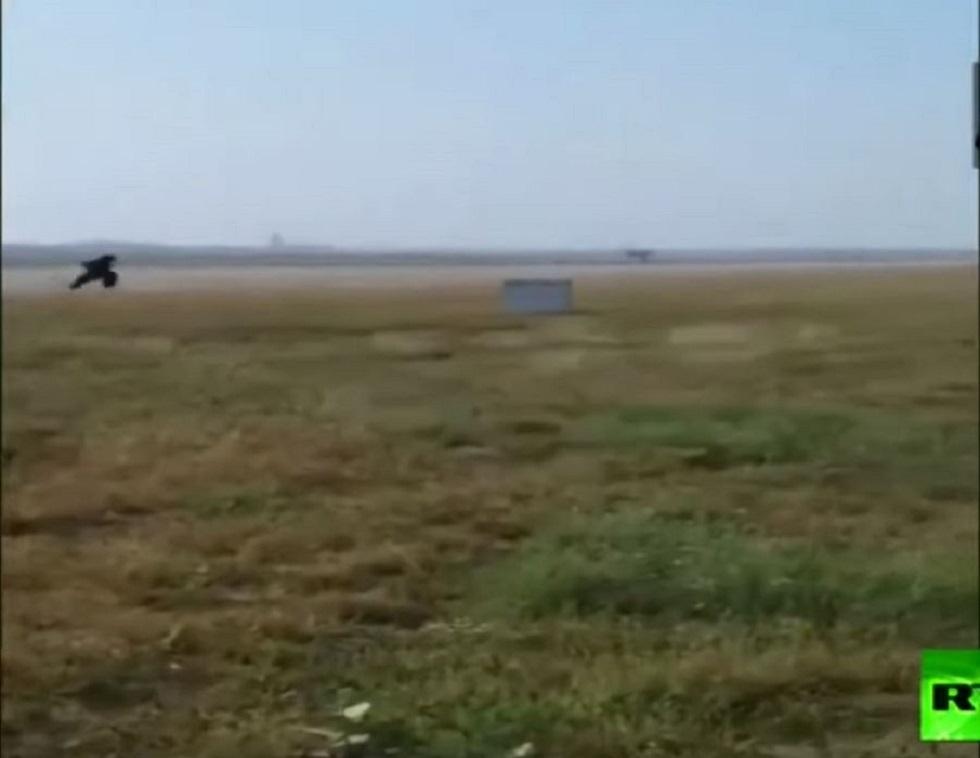 مطار في الهند يلجأ  لطريقة طريفة تبعد القرود عن مدرج  الطائرات