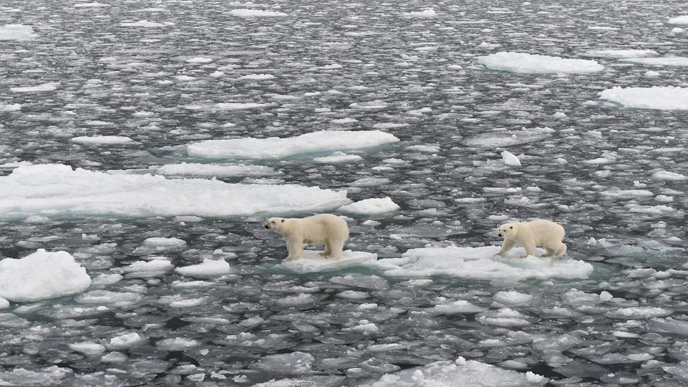 توقعات بحدوث عصر جليدي قصير