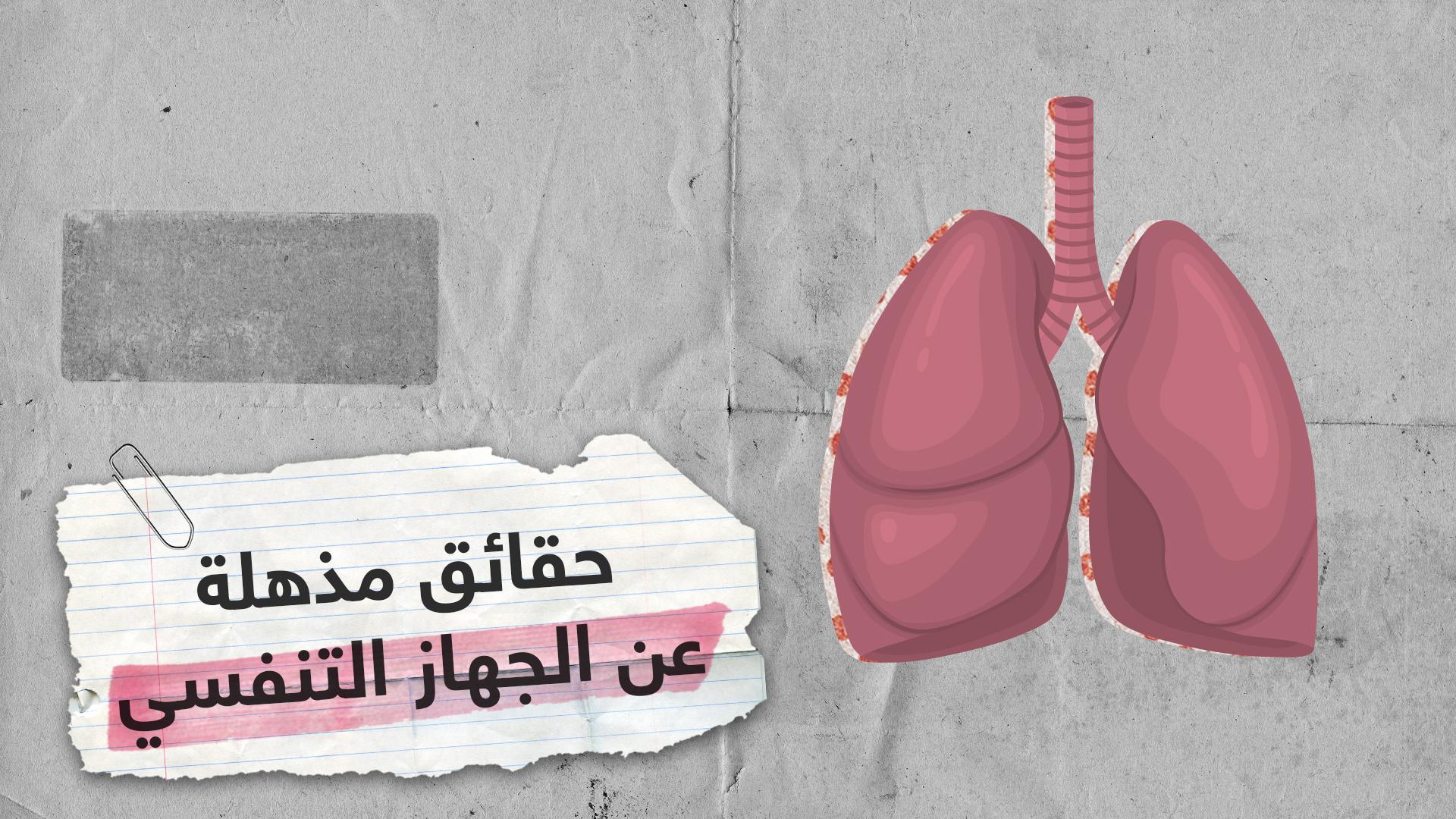 حقائق مذهلة عن الجهاز التنفسي