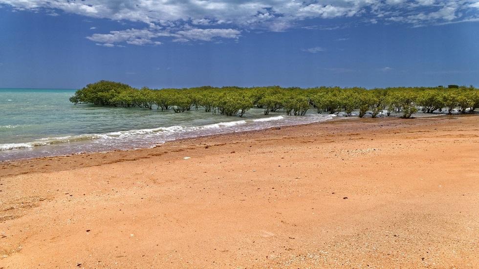 العلماء يتوقعون اختفاء نصف الشواطئ الرملية بحلول عام 2100