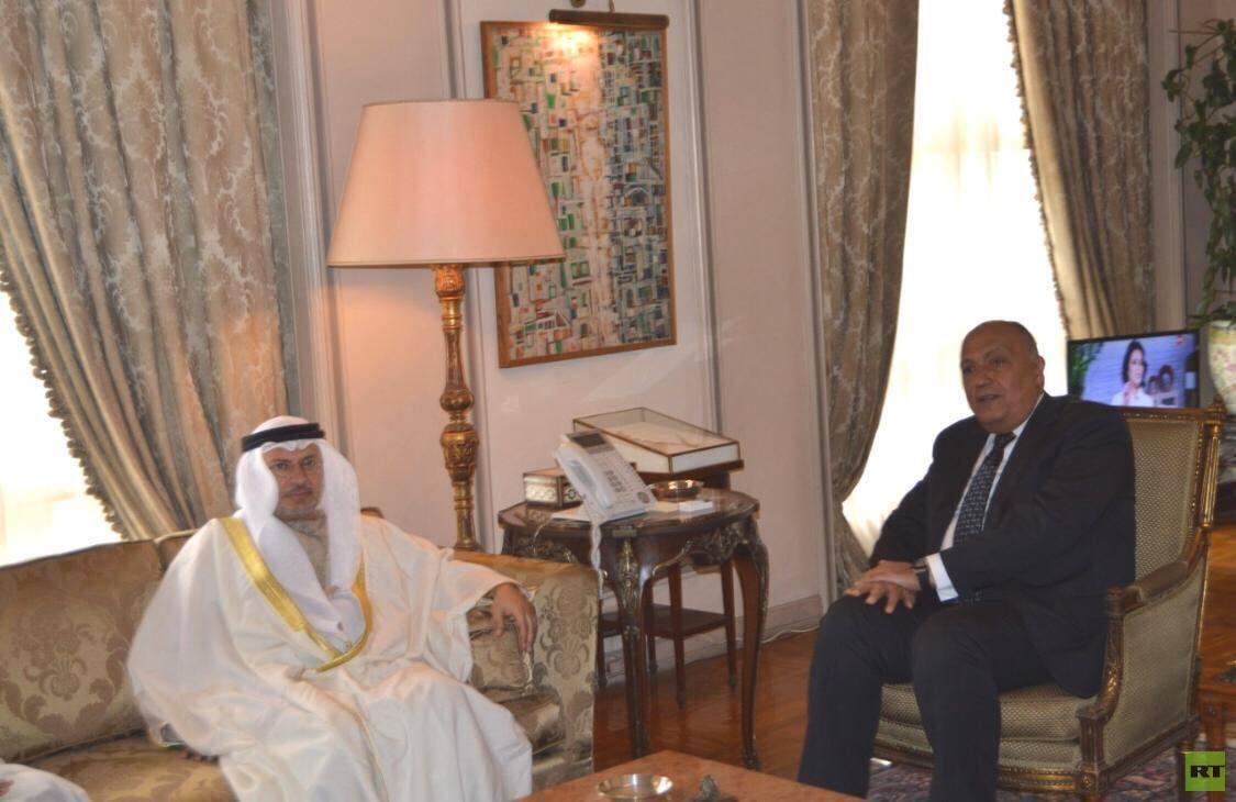وزير الخارجية المصري مع قرقاش
