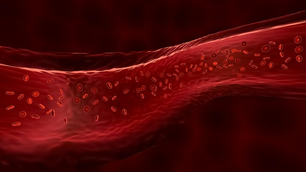 ماذا يجب أن تكون مستويات الأكسجين في الدم وكيف تختبرها؟