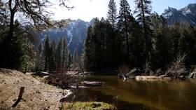 الحيوانات البرية تجوب متنزه يوسيميتي بكاليفورنيا في غياب الزوار