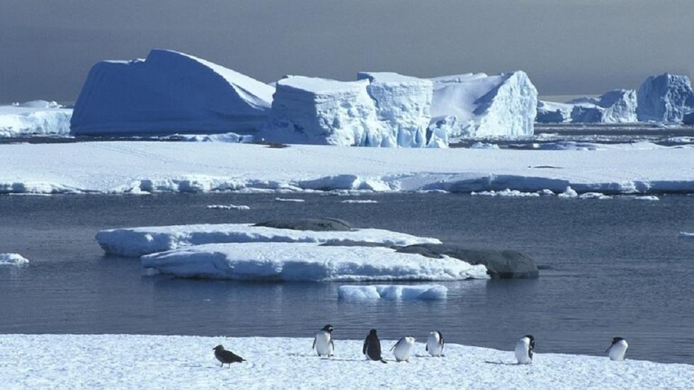 فيديو لكارثة مناخية مرتبطة بذوبان الجليد