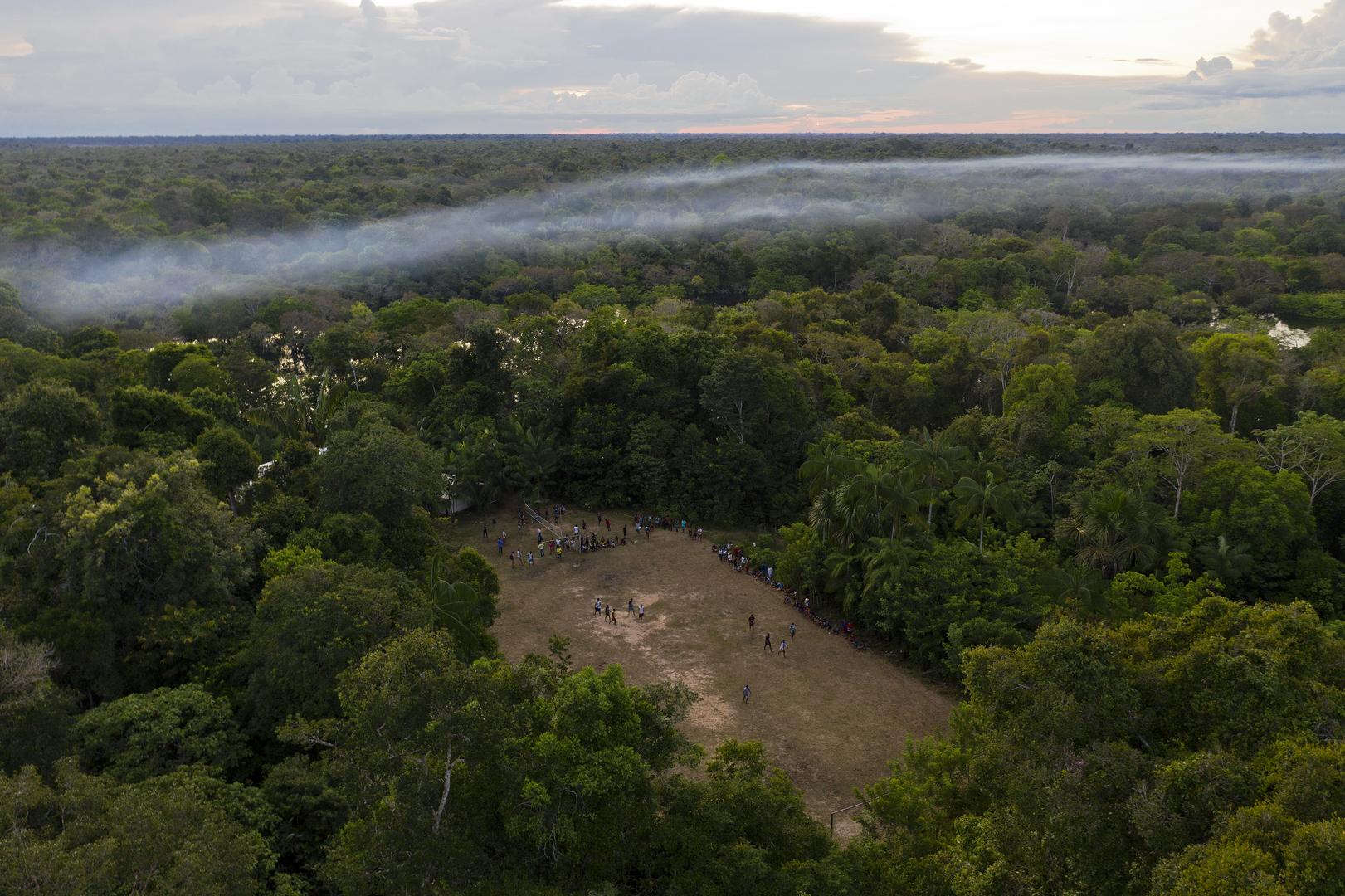غابات الأمازون في البرازيل