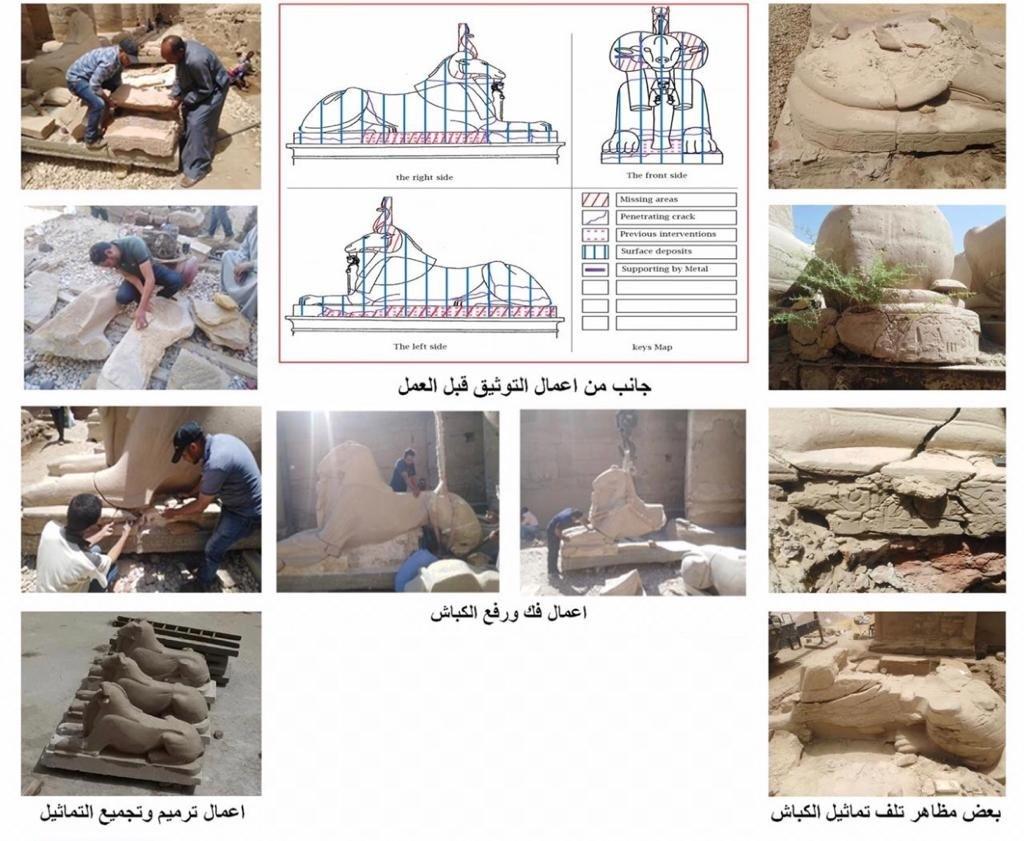 ترميم كباش الصرح الأول بمعبد آمون رع في مدينة الأقصر المصرية