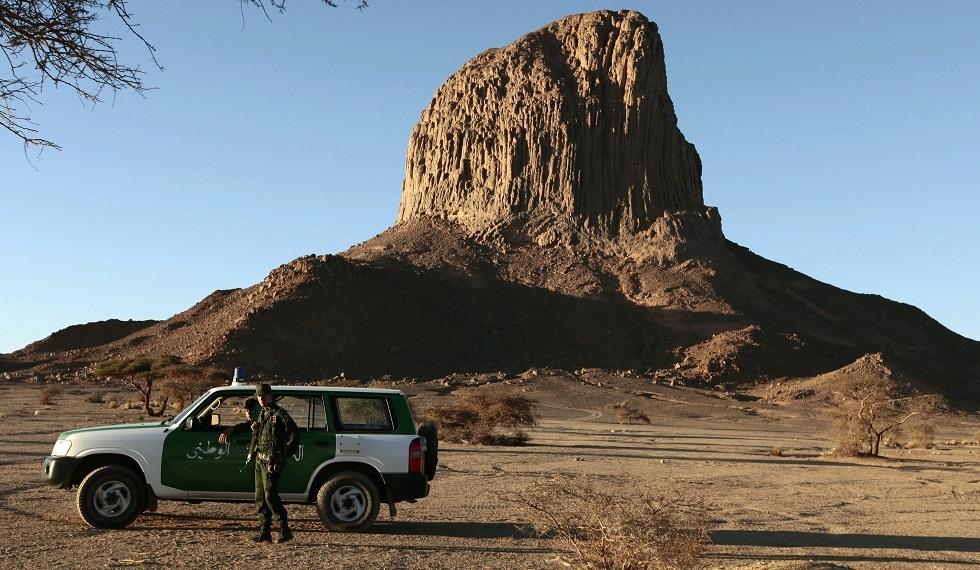 رصد الفهد الصحراوي بالجزائر لأول مرة منذ نحو 15 عاما (صورة)