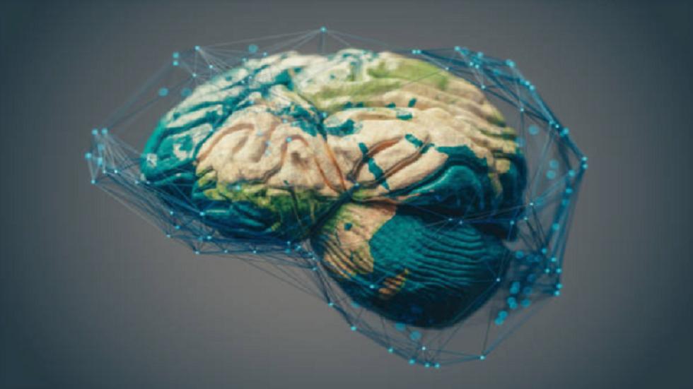 العلماء يكتشفون مفتاح إيقاف الألم في الدماغ