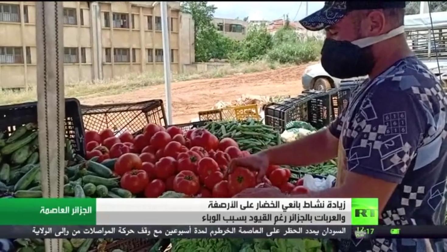 الجزائر..7 وفيات و 280 إصابة جديدة بكورونا